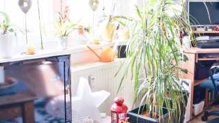 l_bgl-fotoaktion-dsc07250-1-2 BGL - Unter unserm Dach - My sweet home