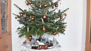 l_bgl-fotoaktion-weihnachtsbahn-um-den-tannenbaum BGL - Unter unserm Dach - Das Beste, was uns passieren konnte