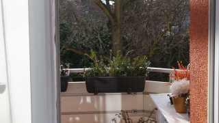 l_dsc09352-1 BGL - Unter unserm Dach - Im Sommer Garten, im Winter Kultur