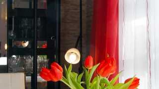 l_dsc09359-1 BGL - Unter unserm Dach - Im Sommer Garten, im Winter Kultur