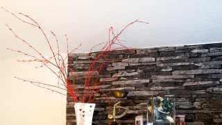 l_dsc09404-1 BGL - Unter unserm Dach - Im Sommer Garten, im Winter Kultur