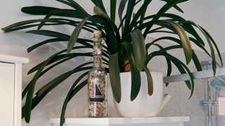 l_kunst-kultur-nette-leute--dsc07147-1 BGL - Unter unserm Dach - Kunst, Kultur, nette Leute und handwerklich gemachtes Bier