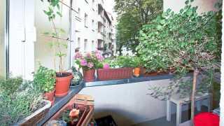 l_schmetterlinge-dsc02673-1 BGL - Unter unserm Dach - Schmetterlinge
