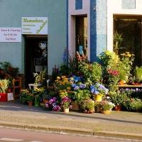 l_blumenladen-richard-lehmann BGL - Gewerbe, Stellplätze & Gärten